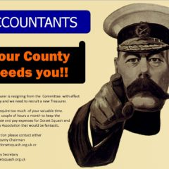 Accountants – Your County Needs YOU!